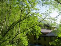 中の湯温泉旅館