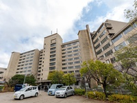 OYOホテル 宮島 Inn ほうらいの里 広島