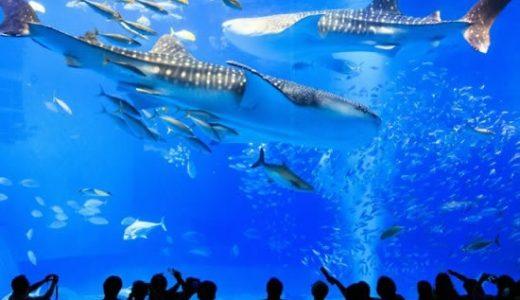 九州各地発【ANAトラベラーズ】今が旅ドキ 沖縄リゾートも観光も楽しめる、あなただけの自由な旅へ!沖縄本島チョイス<レンタカーコース>4日間