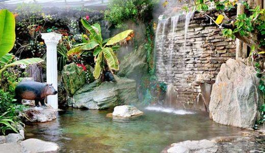 スーパーチャンス!ホテルカターラリゾート&スパに宿泊JR限定列車で行く熱川温泉3日間