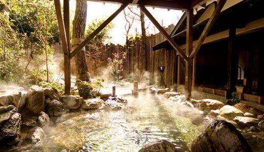 都心からのアクセス抜群!人気の温泉地箱根へ全室露天風呂付客室に泊まるロマンスカーで行く箱根2日間