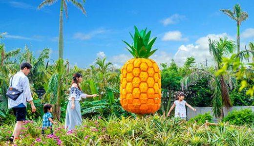 【ANAトラベラーズ】【羽田・成田発着】Go To 沖縄本島チョイス5日間
