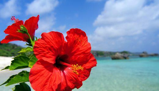 【茨城発着】【WEB限定】那覇&リゾートからホテルが選べるフリープラン気ままにひとり旅 沖縄4日間