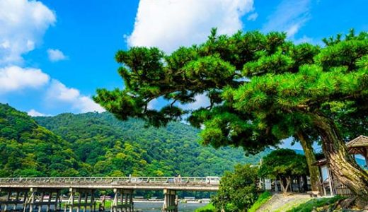 【夕食部屋食プラン】京都の温泉で至福のひと時を楽しむ「嵐山温泉 彩四季の宿 花筏」宿泊 新幹線で行く京都  2日間